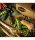 Mix Básico de verduras