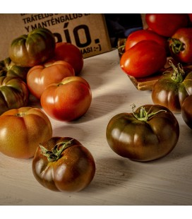 Mix Tomates de temporada
