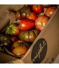Mix Tomates de temporada