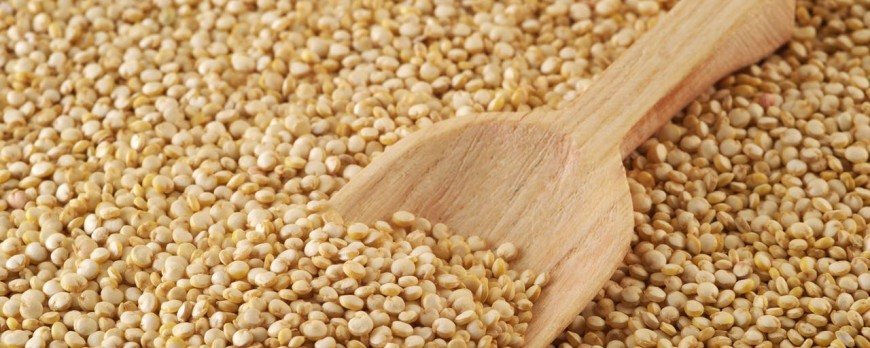 Quinoa: propiedades, consejos y recetas. Pruébala con Miplato
