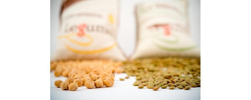 Proteína en la dieta vegetariana: principales fuentes y algunas recetas