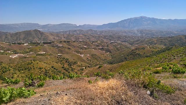 vinos de las sierras de Málaga